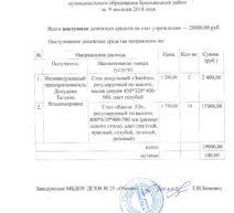 Отчет  о поступлении и расходовании добровольных пожертвовний